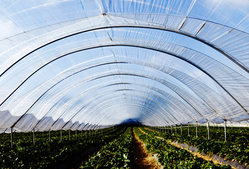 agriculturefilms